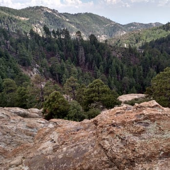Mt Lemmon 2019 All You Need To Know Before You Go With