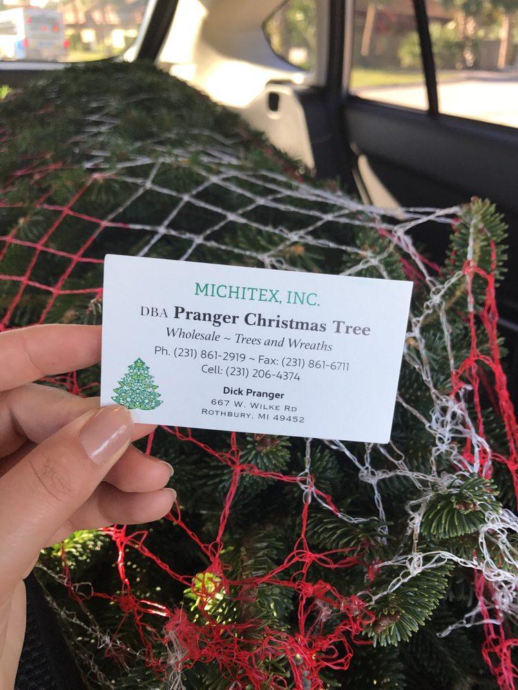 Pranger Christmas Tree: Sarasota, FL