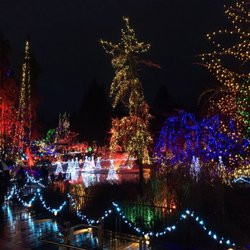 Vancouver Christmas Lights.Festival Of Lights 52 Photos 15 Reviews Festivals