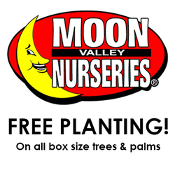 Moon Valley Nurseries Palm Paradise
