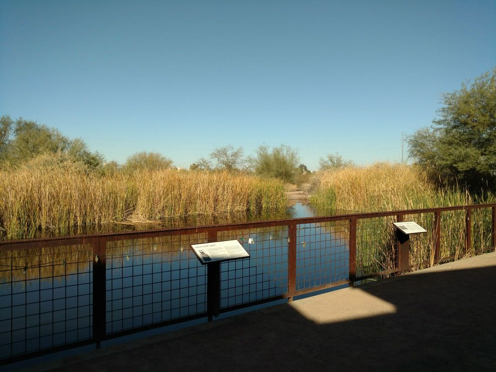 Nina Mason Pulliam Rio Salado Audubon Center