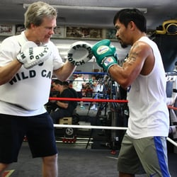 Wild Card Boxing Club & Wild Card Boxing Store - 86 Photos ...