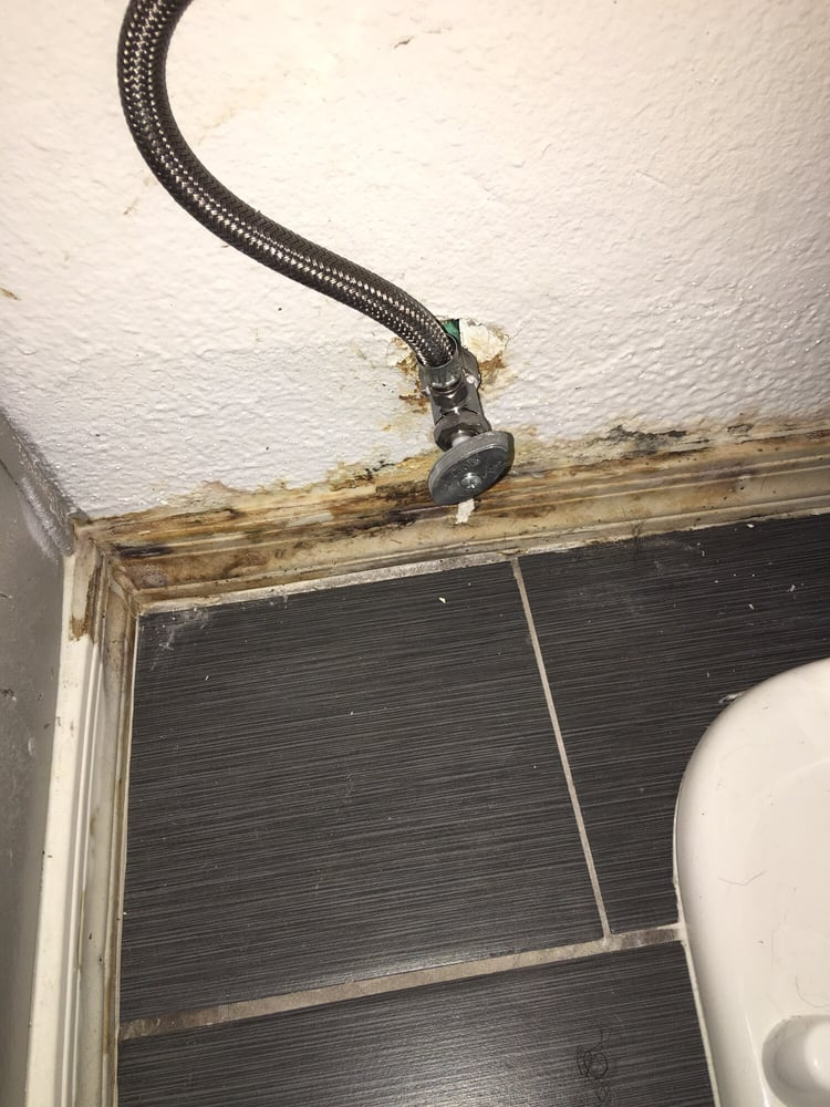 Soaked baseboards behind toilet area - Yelp