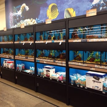 99 Cents Only Stores stores in Irvine CA - Hours, locations and phones Find here all the 99 Cents Only Stores stores in Irvine CA. To access the details of the store (locations, store hours, website and current deals) click on the location or the store name.