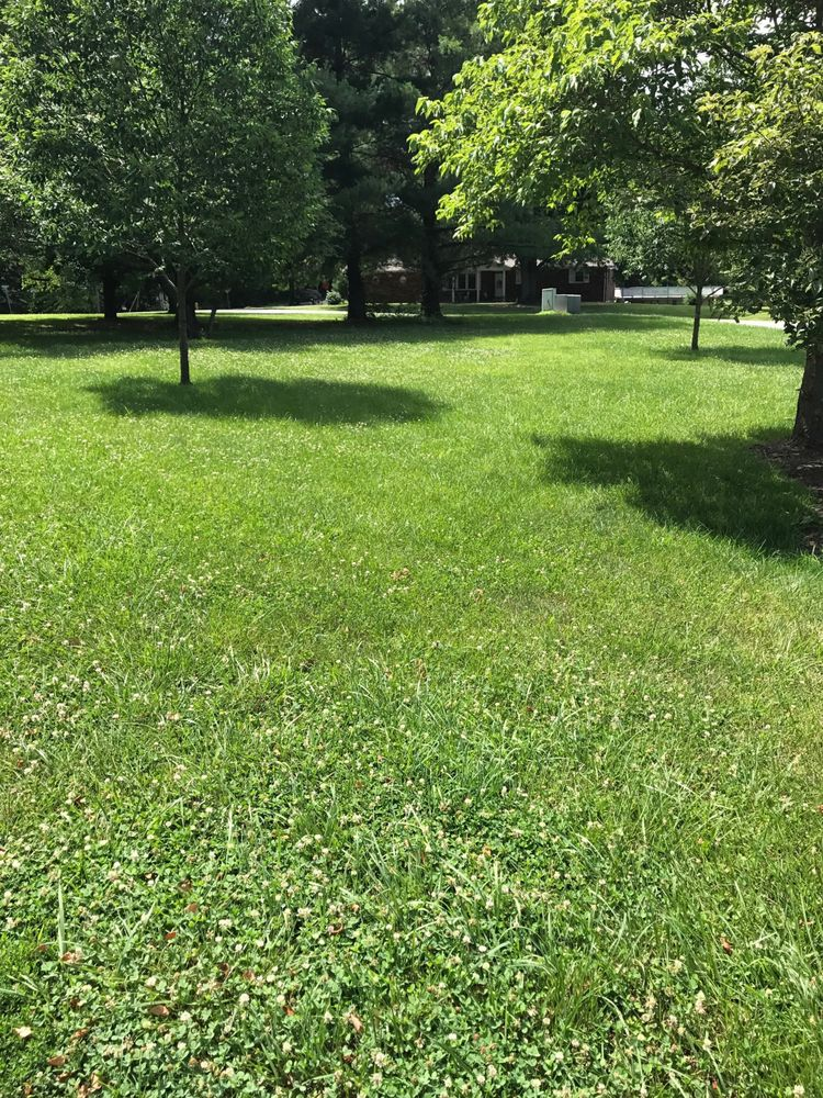 Mike's Mowing and More: 2343 Belleridge Pike, Cape Girardeau, MO