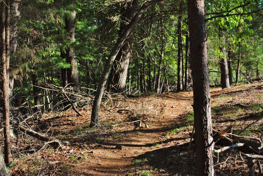 Mountain Laurel Trails: 411 Mountain Laurel Trl, Ridgeway, VA