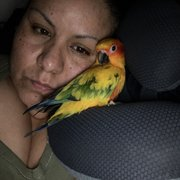 Canoga Discount Birds - 85 Photos & 100 Reviews - Pet Stores