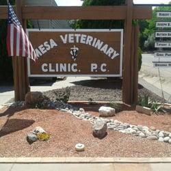 Image result for mesa vet clinic pueblo