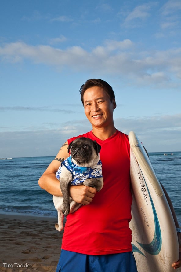 Bugsy The Surfing Dog Eats Raw Yelp