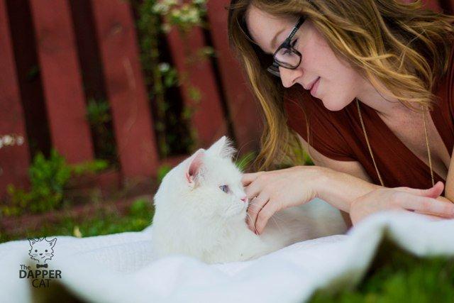 The Dapper Cat: Clinton, OH