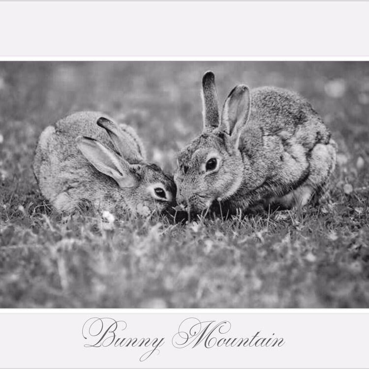 Bunny Mountain: 22299 Chukar Ct, Bear Valley Springs, CA
