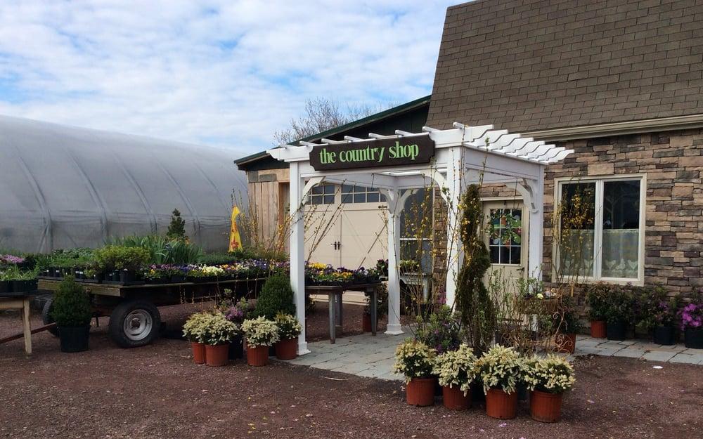 Zanolini Nursery & Country Shop: 603 St Johns Rd, Drums, PA