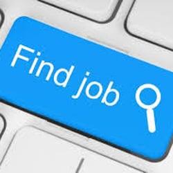 Halo Hiring Employment Solutions Arbeitsvermittlung 1000