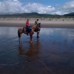 Photo Of Oregon Beach Rides Pacific City Or United States Riding On