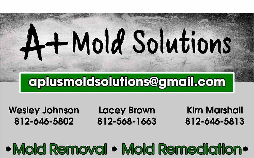A+ Mold Solutions: Tennyson, IN