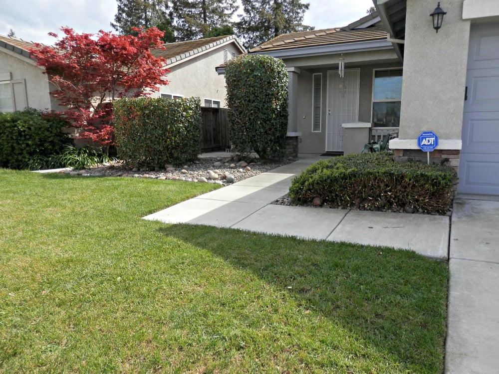 Overgrown bushes blocked the front area of house rocks for Landscaping rocks stockton ca