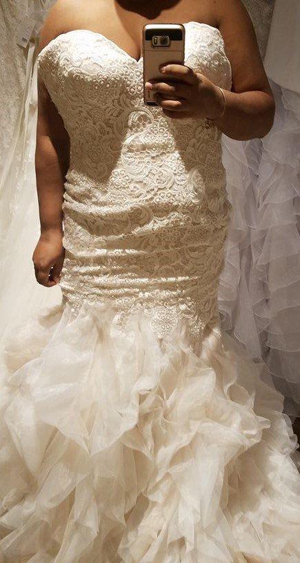 Bella sera bridal choice image wedding dress decoration and refrence photos for bella sera bridal yelp photo of bella sera bridal danvers ma united states junglespirit junglespirit Gallery