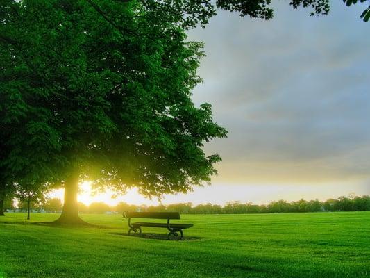 اللون الأخضر في القرآن l.jpg