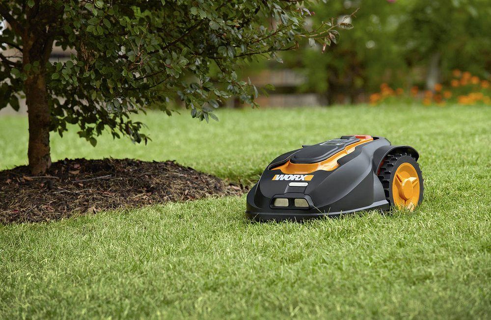 High Standards Lawn Care