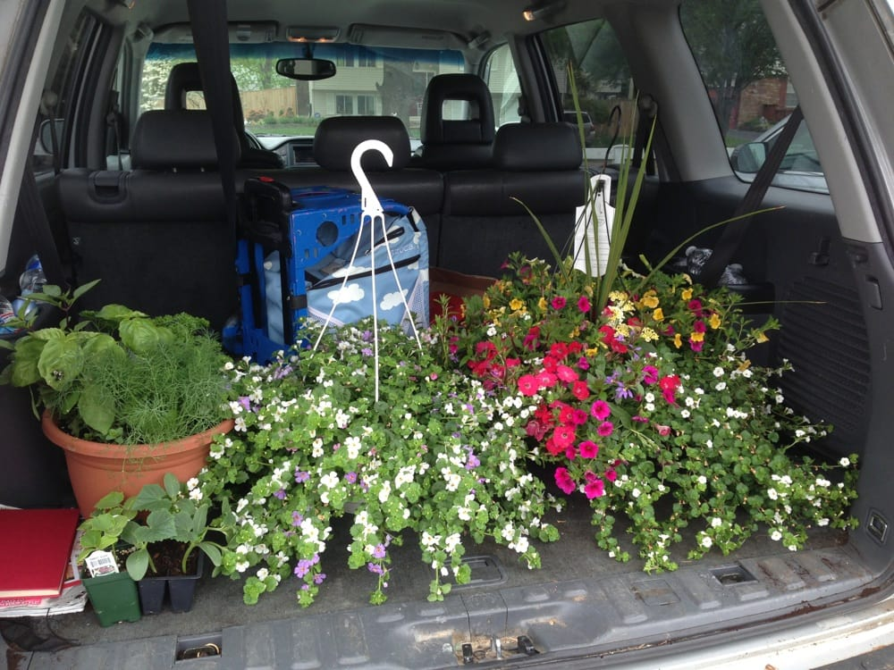 Nothing Says Spring Like My First Big Trip To The Nursery