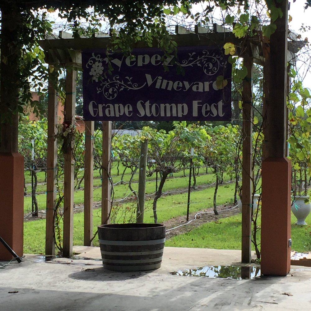 Yepez Family Vineyards: 12739 Fm 2354, Baytown, TX