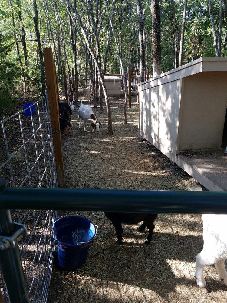 Photos For Blase Family Farm Yelp