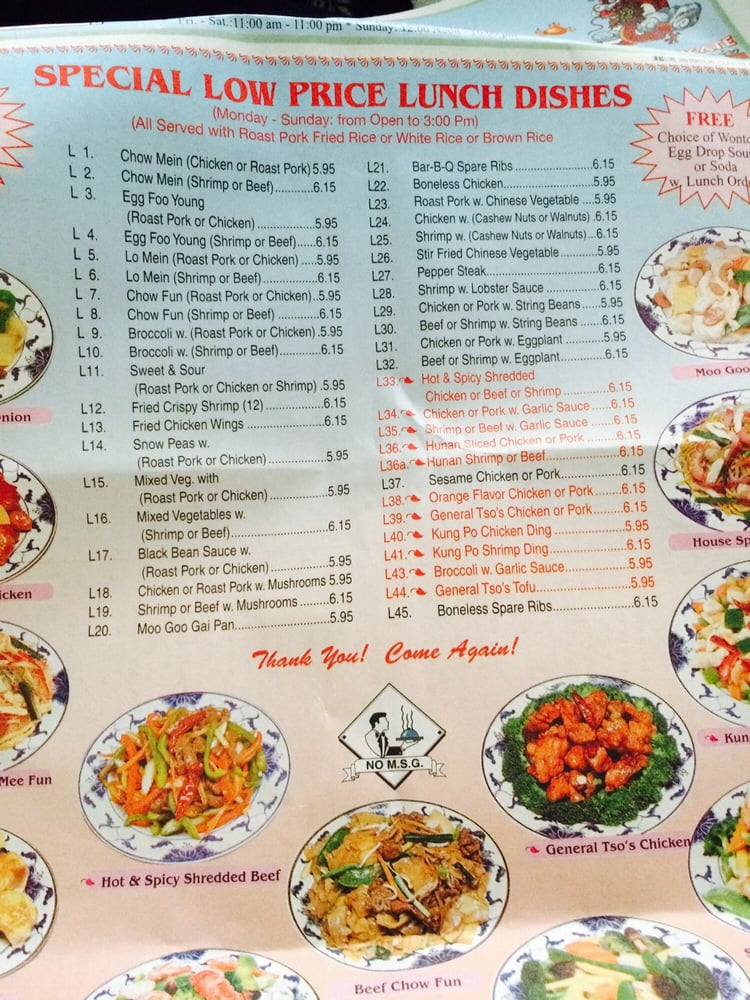 Double Dragon Garden 15 Reviews Chinese 473 Bellmore Ave East Meadow Ny United States