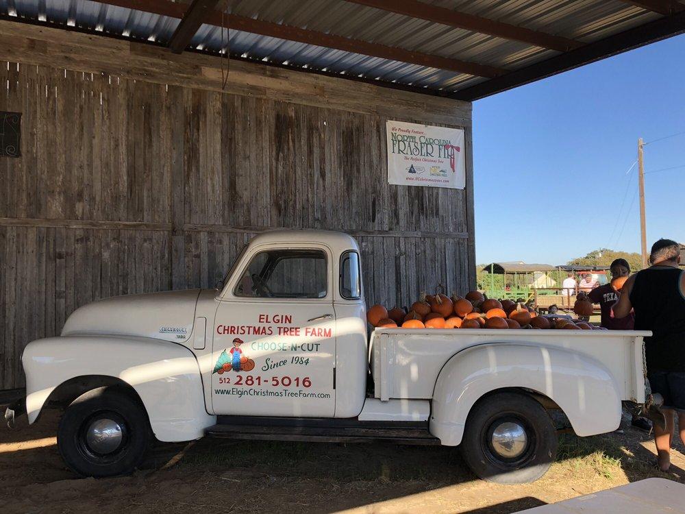 Elgin Christmas Tree Farm: 120 Natures Way, Elgin, TX