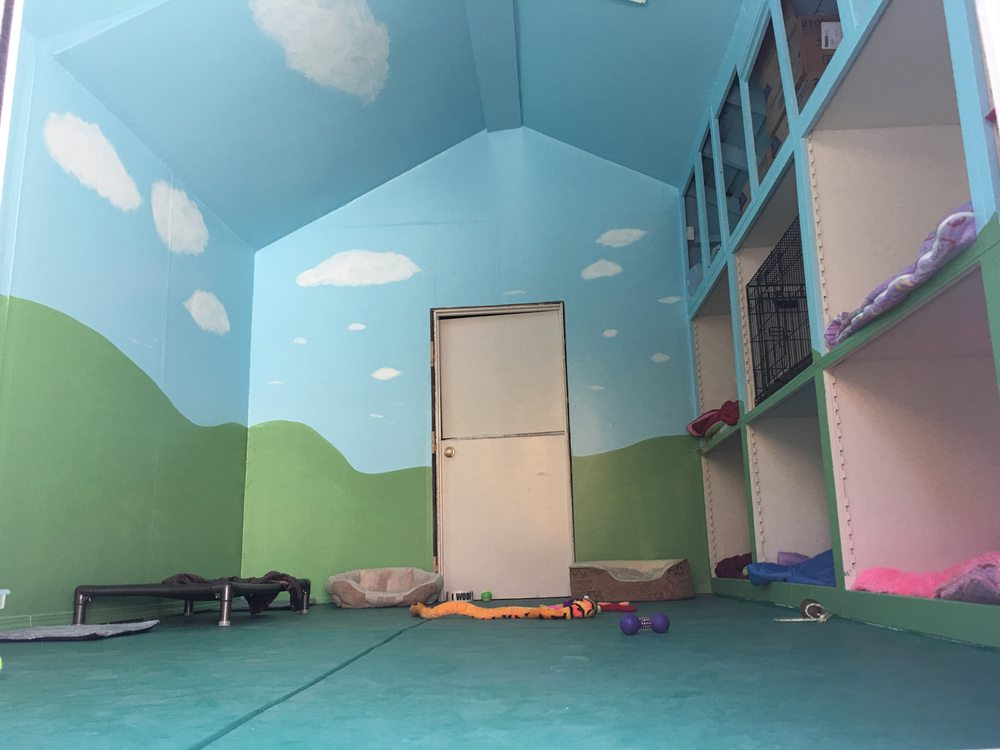 Noah's Bark Dog Daycare: Sunol St, San Jose, CA