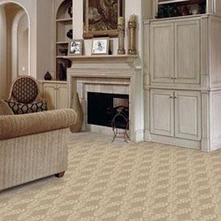 floors unlimited - carpeting - 4009 dr martin luther king jr blvd