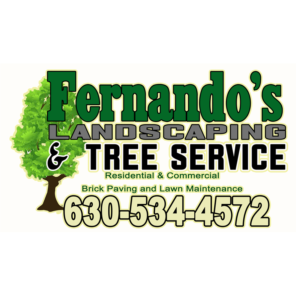 Photos For Fernando 39 S Landscaping Tree Service Yelp