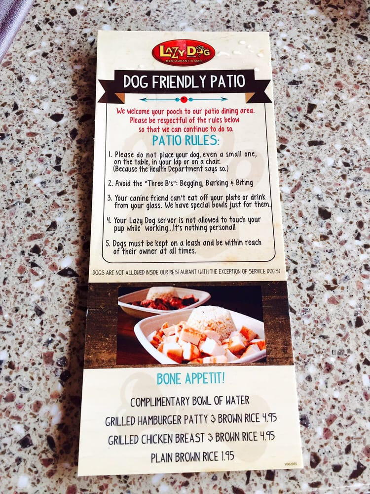 Dog Friendly Restaurants In Dallas Tx