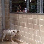 San Antonio Humane Society 66 Photos Amp 56 Reviews