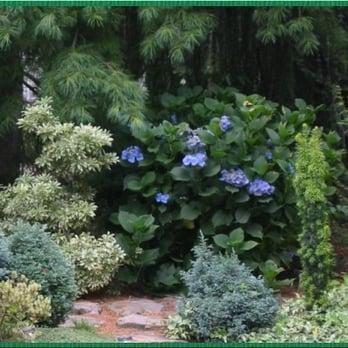Photo Of Sherwood S Forest Nursery Garden Center Ballwin Mo United States