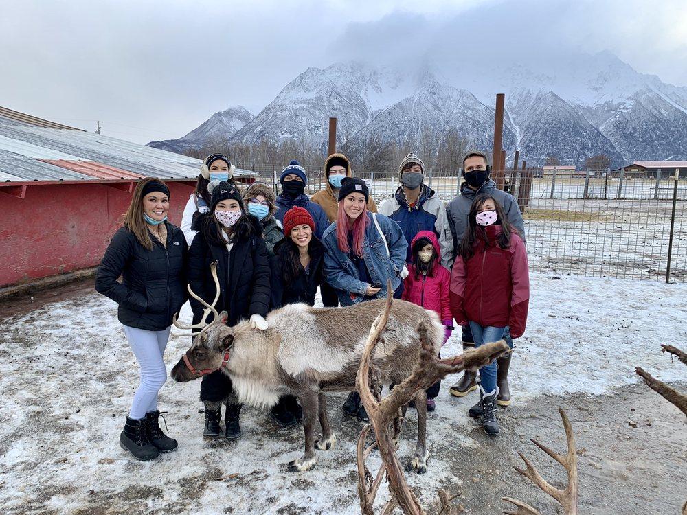Reindeer Farm: 5561 Bodenburg Lp, Palmer, AK