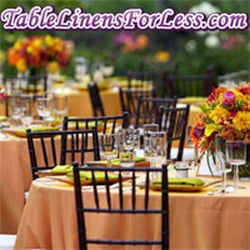 Table Linens For Less