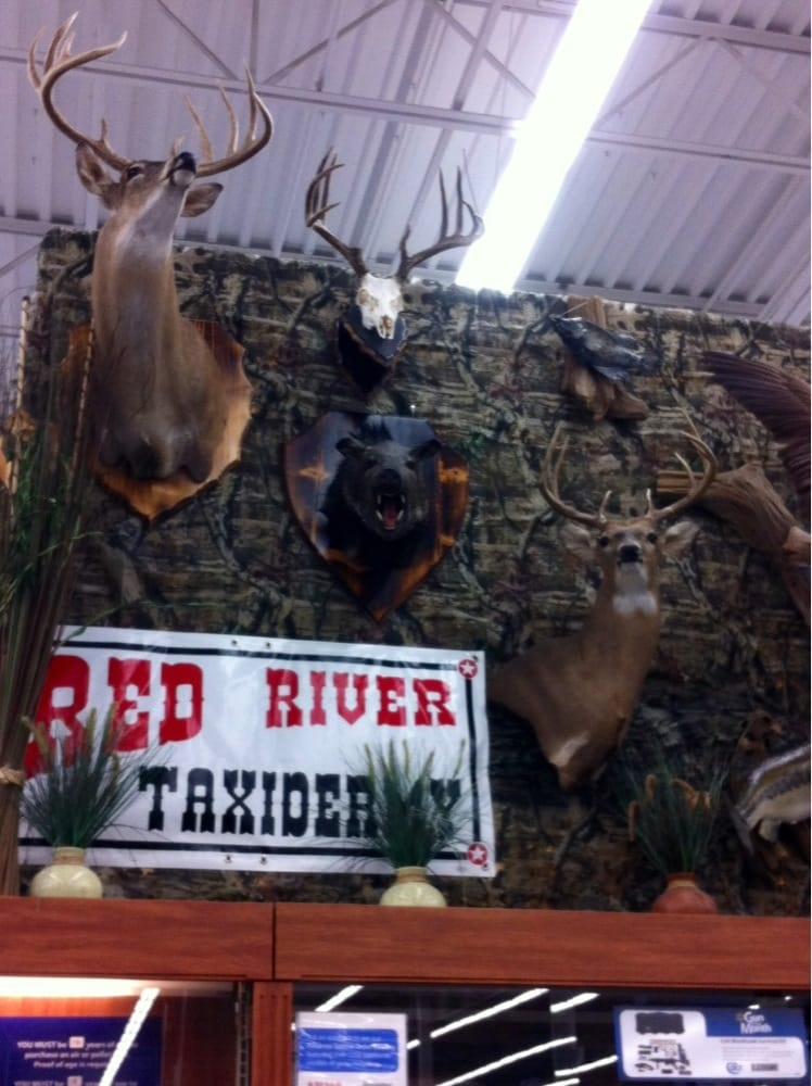 Red River Taxidermy: 3353 N Grand Ave, Gainesville, TX