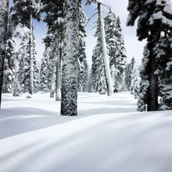Royal gorge ski resort 37 reviews ski resorts 9411 pahatsi photo of royal gorge ski resort soda springs ca united states just sciox Image collections