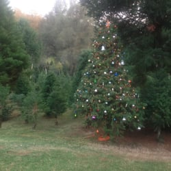 Smith Family Tree Farm - Botanical Gardens - 5700 Green Valley Rd ...