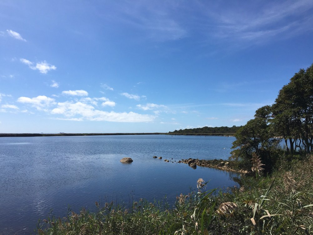 Trustom Pond Wildlife Refuge 41 Photos