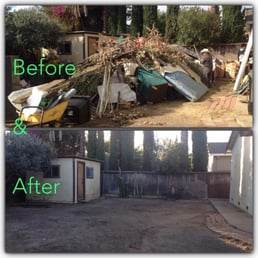 Before & After:Yard Clean Up - 26 Photos - Tree Services ...