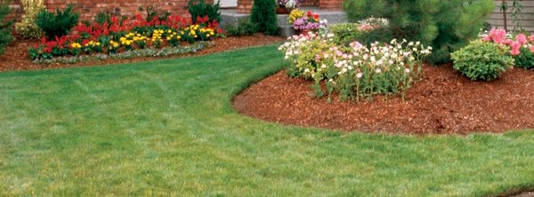 Photo Of Total Lawn U0026 Landscape   Annapolis, MD, United States