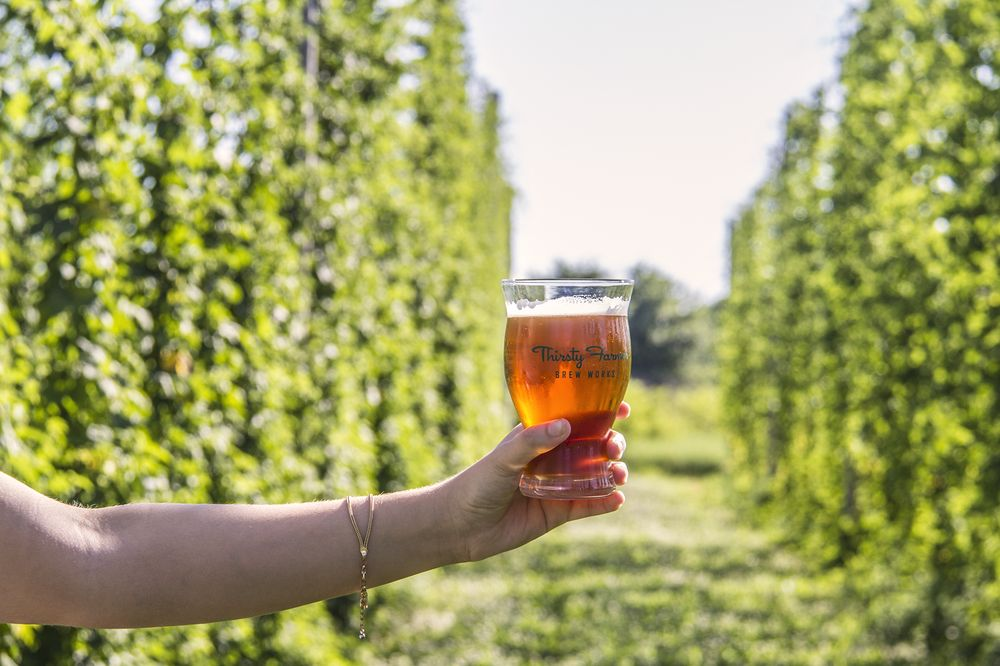 Thirsty Farmer Brew Works: 290 Cashtown Rd, Biglerville, PA