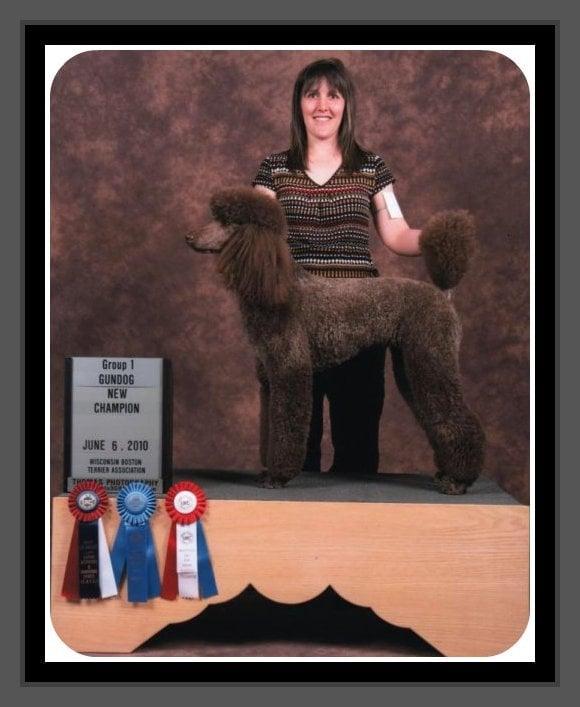 Kim's Canine Design: Sussex Plz, Sussex, WI