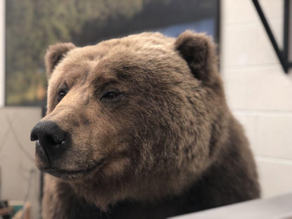 Werner Wildlife Museum: 405 E 15th St, Casper, WY