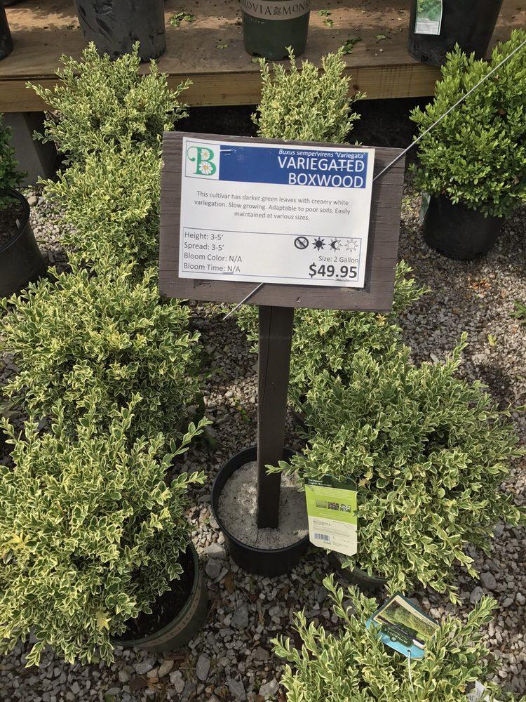 Denny McKeown's Bloomin Garden Centre: 8793 Kenwood Rd, Cincinnati, OH
