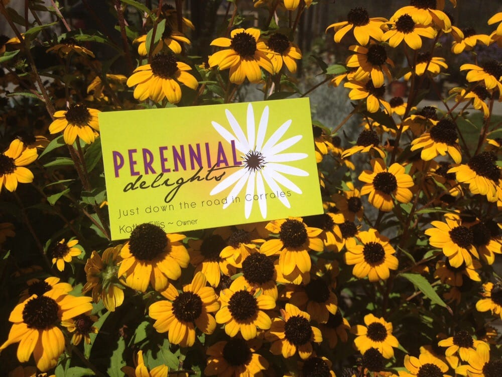 Perennial Delights: 3871 Corrales Rd, Corrales, NM