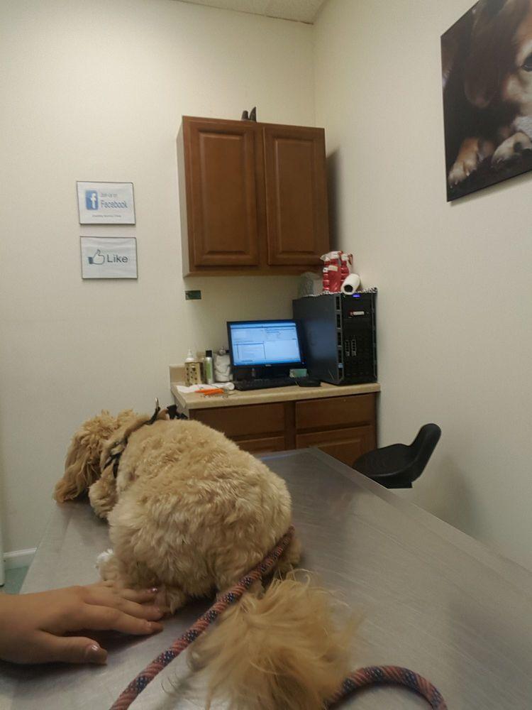 The Country Animal Clinic: 557 Englishtown Rd, Monroe, NJ