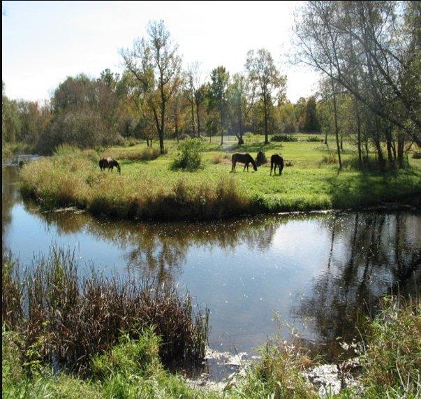 HighCross Farm: W2292 Rustic Dr, Campbellsport, WI