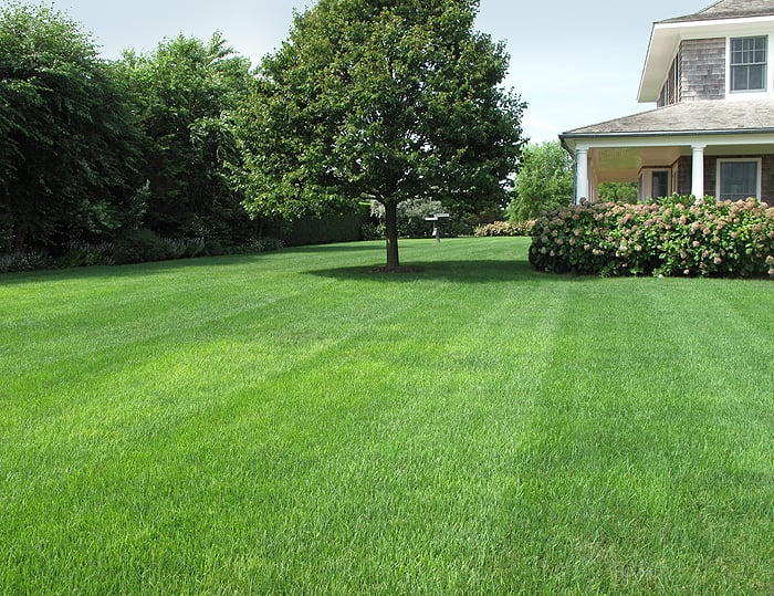 Ivy green lawncare landscaping 205 shamrock industrial blvd tyrone ga phone number yelp for A b lawn and garden